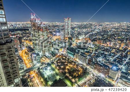 夜の新宿高層ビル群 47239420