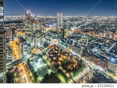 夜の新宿高層ビル群 47239421