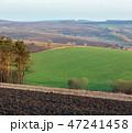 空 農作物 農場の写真 47241458