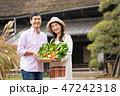 夫婦 農家 野菜の写真 47242318