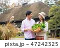 夫婦 農家 野菜の写真 47242325