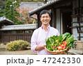 男性 野菜 シニアの写真 47242330