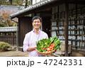 男性 農家 農業の写真 47242331