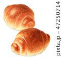 パン バターロール 食べ物のイラスト 47250714