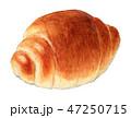 パン バターロール 食べ物のイラスト 47250715