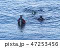 大瀬岬のスキューバダイバー 47253456