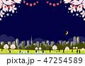 夜桜 提灯 風景 47254589
