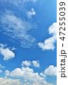 青空 晴れ 快晴の写真 47255039