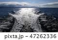 琵琶湖を高速船が波しぶきをたて走る 47262336