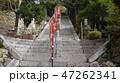 琵琶湖・竹生島宝厳寺への長い参拝階段下から 47262341