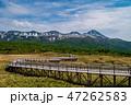 風景 山 初夏の写真 47262583