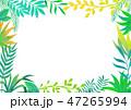 フレーム 枠 植物のイラスト 47265994