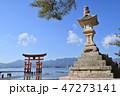 宮島 常夜灯 厳島神社の写真 47273141