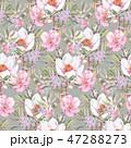 透明水彩 水彩画 花のイラスト 47288273