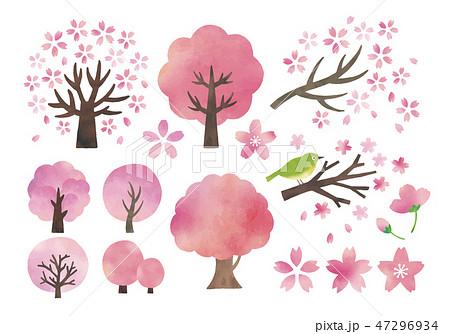 桜の木水彩セット 47296934