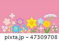 春 花 植物のイラスト 47309708