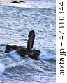 海岸 海 ビーチの写真 47310344