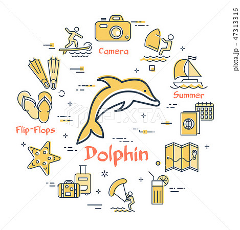 Vector dolphin and summer time vacation icons 47313316