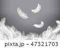 White feather background. Closeup bird or angel feathers. Falling weightless plumes. Dream 47321703