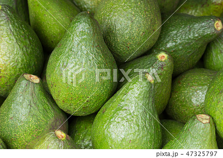 Background of fresh green avocado close up, vegetables in the shop market 47325797