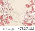 手書き風の桜の和柄の背景 47327188