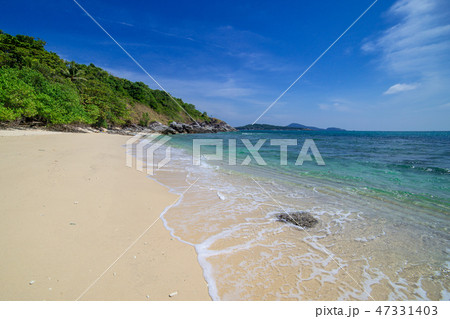 Palms, sea and beautiful tropical secret beach 47331403
