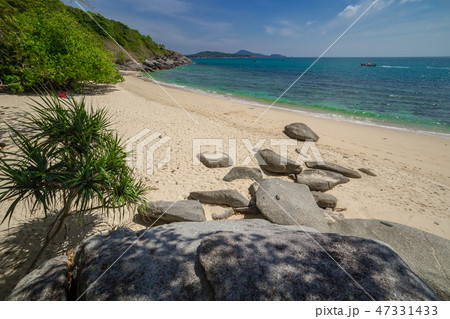 Palms, sea and beautiful tropical secret beach 47331433