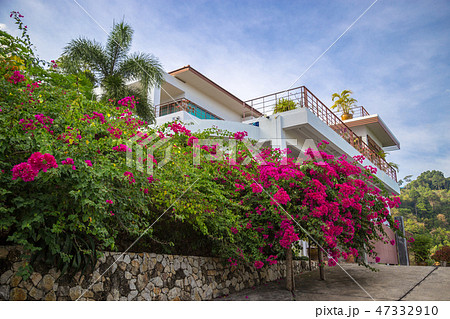 Caribbean, mediterranean style building with balcony covered with colorful flowers. 47332910