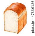 パン 食パン 水彩のイラスト 47336186