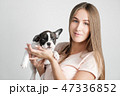 こいぬ 仔犬 子犬の写真 47336852