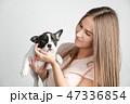 こいぬ 仔犬 子犬の写真 47336854