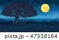 月 ナイト 景色のイラスト 47338164