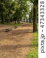 公園 ベンチ 道の写真 47343328