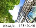 高層ビル ビル 新緑の写真 47349140