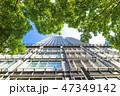 高層ビル ビル 新緑の写真 47349142