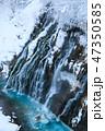 厳冬の北海道_白ひげの滝 47350585
