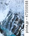 厳冬の北海道_白ひげの滝 47350588