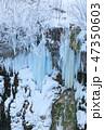 厳冬の北海道_白ひげの滝 47350603