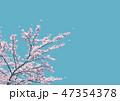 青空 桜 花のイラスト 47354378