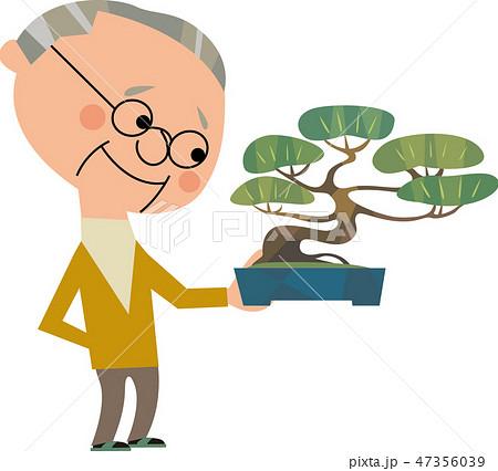 盆栽 47356039