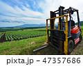嬬恋村 畑 キャベツ畑の写真 47357686