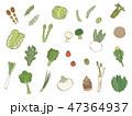 野菜 春 セットのイラスト 47364937