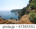 鵜の巣断崖 47365501