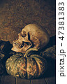骨 ハロウィン ハロウィーンの写真 47381383