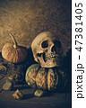骨 ハロウィン ハロウィーンの写真 47381405