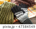 手袋 冬 ファッション小物 防寒 47384549