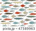 魚 絵 スケッチのイラスト 47389963