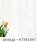 木目 壁 白のイラスト 47391047