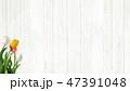 木目 壁 白のイラスト 47391048