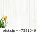 木目 壁 白のイラスト 47391049